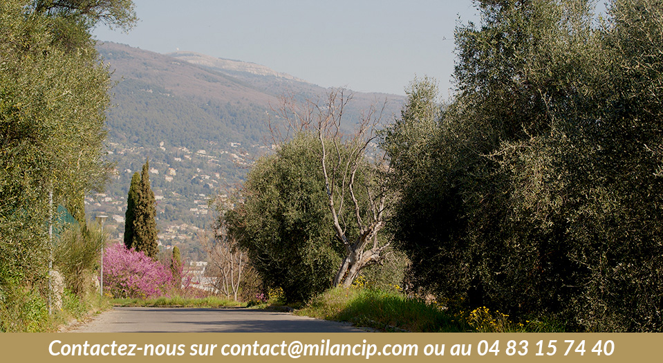 appartements neufs GRASSE 4 Chemins - Vue vers le Nord